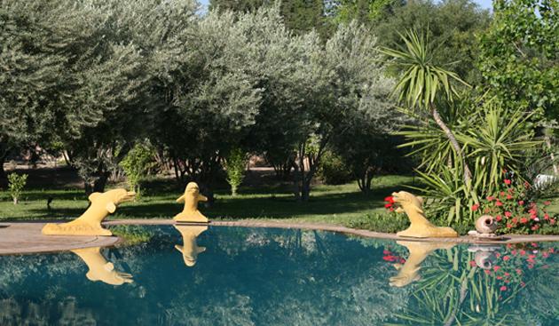 hotel-palmeraie-pools.jpg