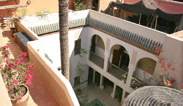 riad-palmier-terrasse.jpg