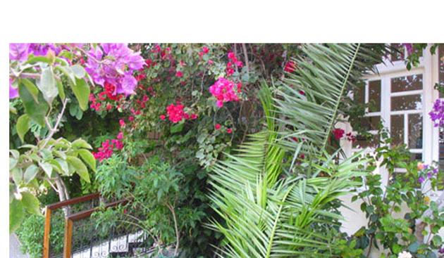 villa_flora_jardin_vue_15.jpg